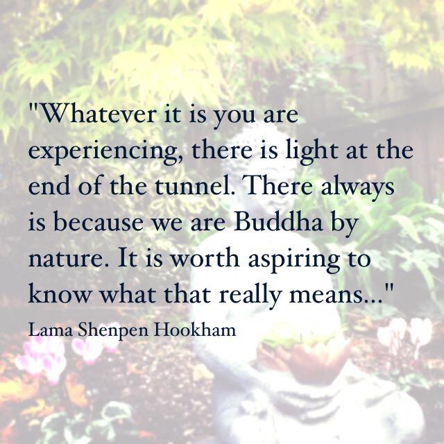 Buddha by nature. Lama Shenpen advises a meditation student at a difficult time in their life